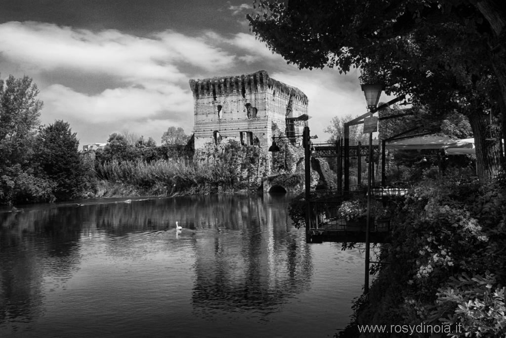 Fotografie paesaggi bianco e nero rosy di noia - Tappeto bianco e nero ...